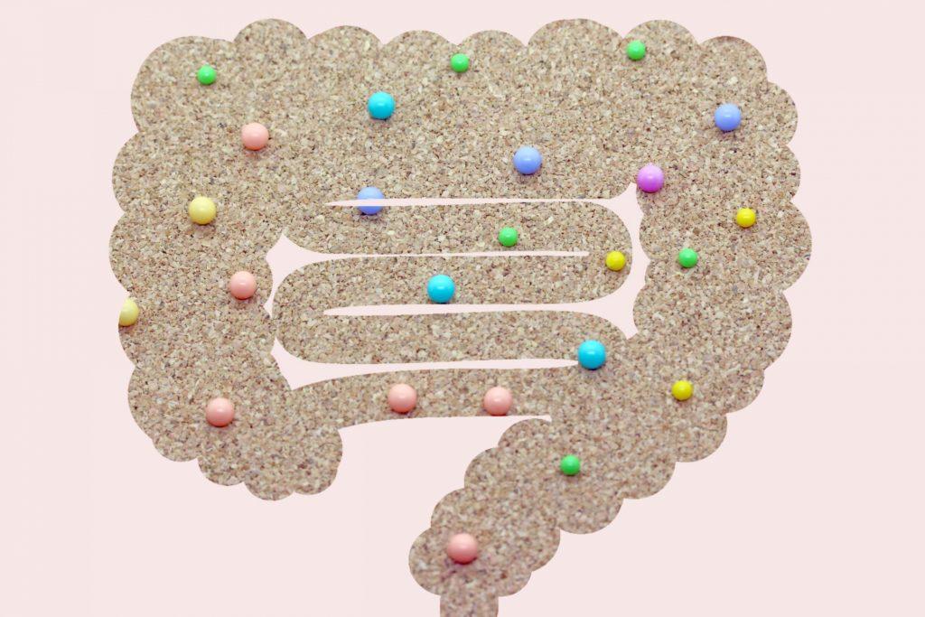 腸管組織の役割と侵襲による変化